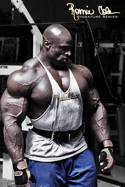 Ronnie Coleman Off Season Diet http://forum.bodybuilding.com/showthread.php?t=153534041&page=1